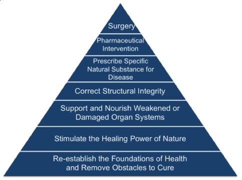 naturopathic medicine pyramid
